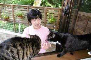 猫のモノ子とひじきが見てます